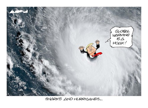 Cartoon: Hurricanes (medium) by Amorim tagged hurricane,irma,katia,harvey,jose,trump