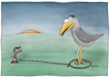Cartoon: Der frühe Vogel kann mich mal. (small) by AndreJ tagged vogel,früh,early,bird