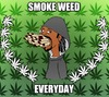 Cartoon: Smoke Weed Every Day (small) by Stoner tagged smoke,weed,cannabis,marijuana