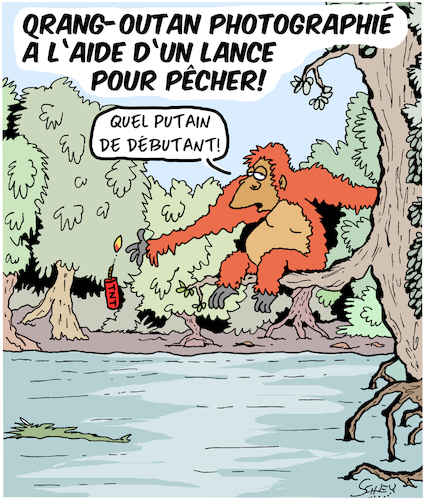 Cartoon: Orang-Outan avec une lance!! (medium) by Karsten tagged animaux,evolution,nature,singes,nutrition,medias,animaux,evolution,nature,singes,nutrition,medias