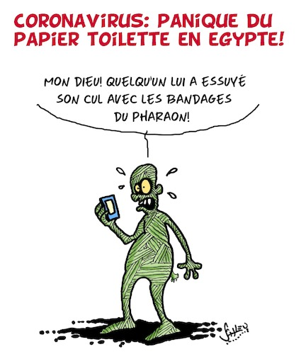panique du papier toilette