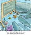Cartoon: Whale Sex Ed (small) by noodles tagged spermwhale,ocean,blowhole,humpback,noodles