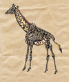 Cartoon: giraffe half dead (small) by Battlestar tagged giraffe,tiere,animals,skelett,natur,illustration