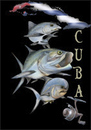 Cartoon: cuba fishing (small) by HSB-Cartoon tagged cuba,kuba,caribean,karibik,saltwater,ocean,sea,fish,tarpon,permit,fishing,angeln,meeresfisch,meer,ozean,angelsport,airbrush,airbrushillustration,fischillustration