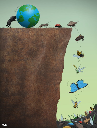 Cartoon: Insect Extinction (medium) by Tjeerd Royaards tagged insects,insecticide,extinct,cliff,earth,bees,beetle,insects,insecticide,extinct,cliff,earth,bees,beetle