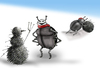 Cartoon: Winter Scarab.. (small) by berk-olgun tagged winter,scarab