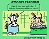 Cartoon: Koeien (small) by cartoonharry tagged dieren,koeien,vlekken,schoonmaken