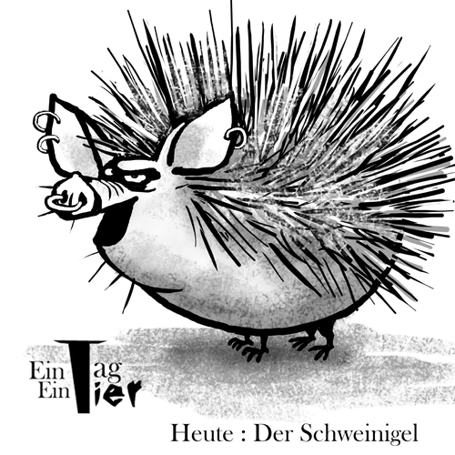 Cartoon: Der Schweinigel (medium) by Mistviech tagged tiere,natur,schwein,igel,schweinigel,versaut,sau