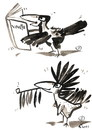 Cartoon: ROOK - VINETU WINNETOU (small) by Kestutis tagged philosophy,animals,nature,birds,rook,vinetu,winnetou,book,indian