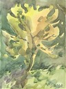 Cartoon: Summer etudes. Yellow tree (small) by Kestutis tagged summer,etudes,yellow,tree,sketch,kestutis,lithuania,watercolor