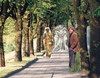 Cartoon: The Three Graces and Kestutis (small) by Kestutis tagged graces,canova,kestutis,siaulytis,lithuania,collage