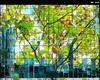 Cartoon: MH - City in Glass III (small) by MoArt Rotterdam tagged rotterdam,city,stad,glazenstad,glasscity,photoblend,fotomix,summer,zomer,endofsummer,fadingsummer,zomereinde,richtingherfst,autumn,autumnleaves