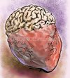 Cartoon: Brain-Heart (small) by Bob Row tagged brain,heart,intelligence,sensibility,emotions,philosophy,psychology