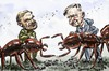 Cartoon: Hölldobler and Wilson (small) by Bob Row tagged science,ants,superorganism,entomology,sociobiology