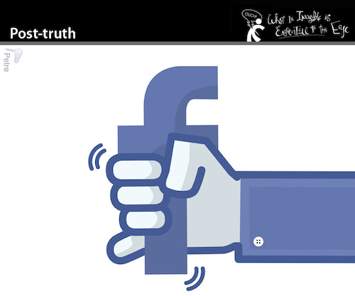 Cartoon: Post truth (medium) by PETRE tagged posttruth,facebook,nets,social,web,onanism