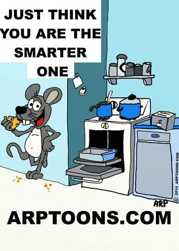 Cartoon: KITCHEN SMARTS (medium) by tonyp tagged arp,kitchen,rat,smarts,arptoons