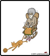 Cartoon: Knit Cat (small) by cartertoons tagged cat knit grandma rocking yarn