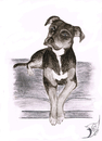 Cartoon: Hund 2 (small) by swenson tagged hund dog perro tier animal animals
