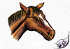 Cartoon: Pferd 2012 in Techni-Color (small) by swenson tagged pferd horse tier animal animals 2012