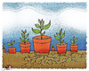 Cartoon: soil... (small) by saadet demir yalcin tagged sdy,saadet,syalcin,turkey,cartoon,natura,soil