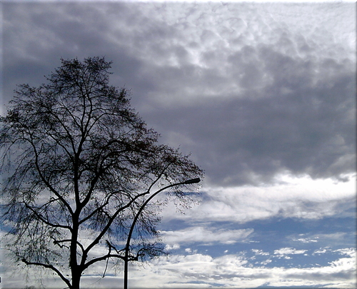 Cartoon: Oktoberwolken bei starkem Wind (medium) by lesemaus tagged oktober,wolken,wetter