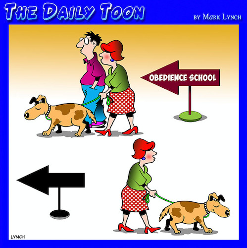 Cartoon: Obedience school (medium) by toons tagged husbands,obedience,school,dogs,training