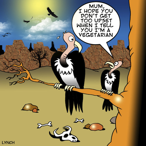 Cartoon: vegetarian (medium) by toons tagged vegetarian,vultures,carion,birds,eating,carkass,food,dining,restaurants,vegan