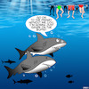 Cartoon: Buffet (small) by toons tagged sharks,feeding,frenzy,buffet,fish,swimmers,shark,attack,animals,oceans