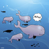 Cartoon: MiPod (small) by toons tagged whales,ipod,ipad,itunes,fish,whaling