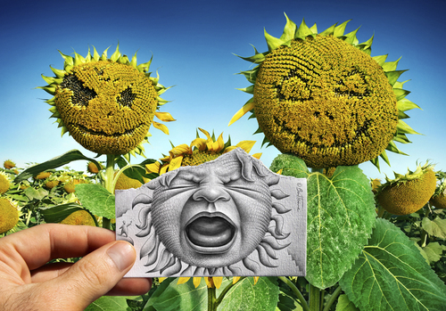 Cartoon: Pencil Vs Camera - 62 (medium) by BenHeine tagged spain,santiago,nature,shout,cry,baby,flowers,family,sunflower,sketch,augmented,surrealism,reality,imagination,photography,drawing,benheine,heine,ben,art,pencilvscamera,camera,vs,pencil