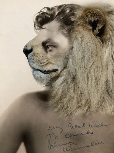 Cartoon: Johnny Tarzan Weissmuller! (medium) by willemrasingart tagged great,personalities