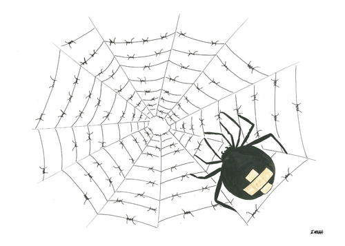 Cartoon: spider (medium) by emraharikan tagged spider