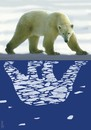 Cartoon: reflection in polar waters (small) by Medi Belortaja tagged reflection in polar waters bear