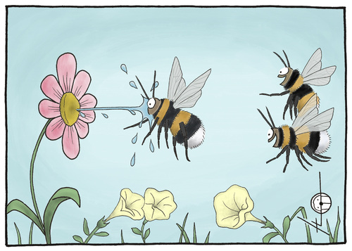 Cartoon: Kleiner Scherz unter Hummeln. (medium) by badham tagged badham,bee,bumble,bumblebee,scherz,blumen,sommer,lachen,laugh,summer,flower,humor,joke,witz,hummel,hummel,lachen,sommer,blumen,scherz,natur,insekten,garten