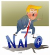 Cartoon: Trump will trash the expired NAT (small) by Shahid Atiq tagged afghanistan,nato,bahar,hiba,rahio