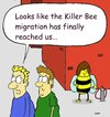 Cartoon: No country for old bees (small) by sardonic salad tagged killer,bees