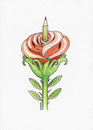Cartoon: Rose (small) by ercan baysal tagged birth,pen,rose,art,artist,seed,picture,figure,joy,opinion,bill,poster,greetings,banner,good,job,fineart,vision,tag,word,sketch,handmade,ercan,logo,illustration,ercanbaysal,grafik,humor